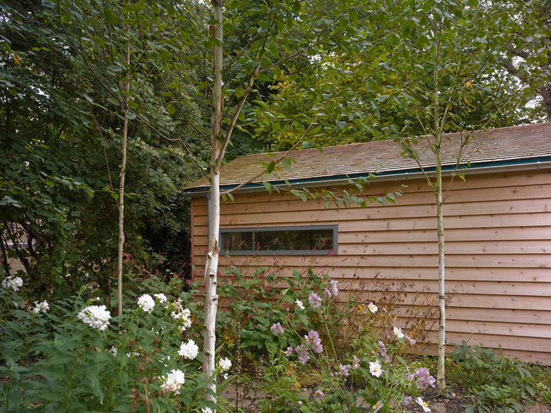 Garden Office / Gallery / Den external perspective clad in larch wood surrounded by trees