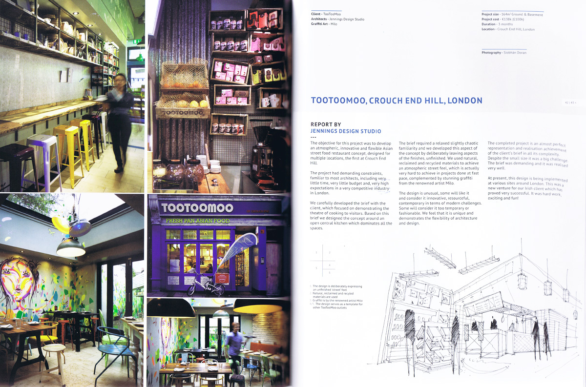 Tootoomoo in RIAI arcticle, text, photographs and drawing