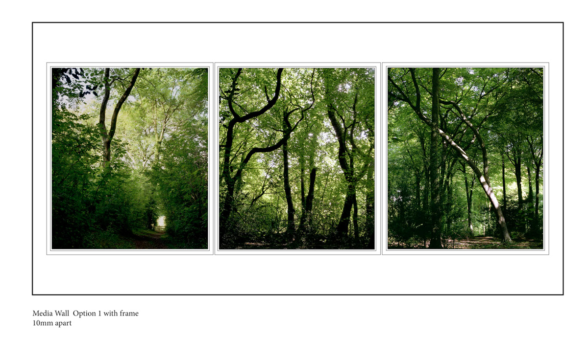 'In the Forest' series Lightbox proposal within a wall recess